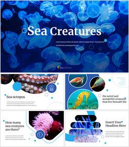 바다 생물 편집이 쉬운 슬라이드 디자인_00