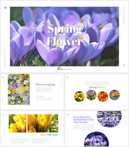 봄 꽃 비즈니스 사업 피피티_00