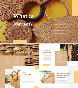 what is rattan? Google Slides mac_00