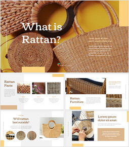 what is rattan Presentations PPT_00