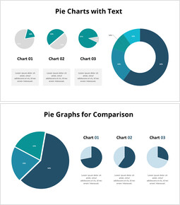 Three Pie Graphs with Explanation_00