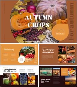 Autumn Crops Best PPT Slides_00