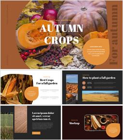 Autumn Crops Google Slides Themes for Presentations_00
