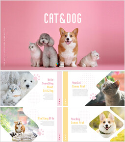 Cat Dog Business plan PPT_00