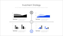 Investment Strategy Template Layout_00