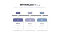 management Process PPT Layout_2 slides