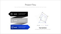 Project Flow Slide Layout_00