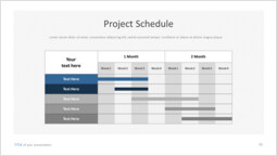 Project Schedule Slide Layout_00