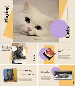 고양이 키우기 창의적인 구글슬라이드_00