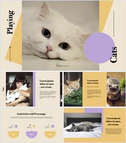 고양이 키우기 키노트 템플릿_00