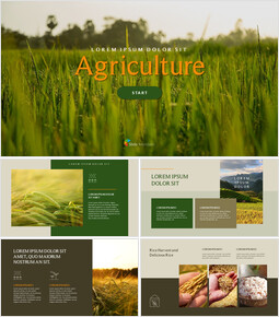Agriculture Google Slides to PowerPoint_00