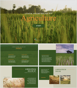 Agriculture Multipurpose Keynote Template_40 slides