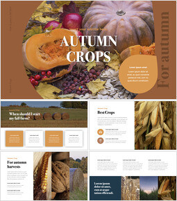 Autumn Crops Windows Keynote_00