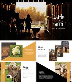 Cattle Farm Apple Keynote for Windows_00