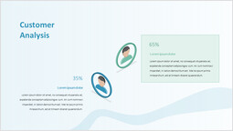 Customer Analysis PPT Layout_00
