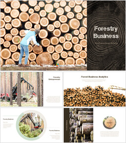 Forestry Business PowerPoint Backgrounds_40 slides