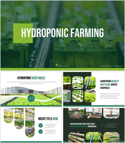 Hydroponic Gardening PPT Templates Simple Design_40 slides