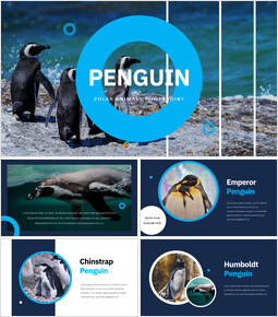 Penguin Google Slides mac_00