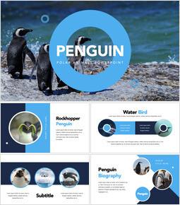 Penguin Keynote for Microsoft_40 slides