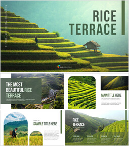 Rice Terrace power point powerpoint_40 slides