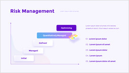 Risk Management Graph Slides_00
