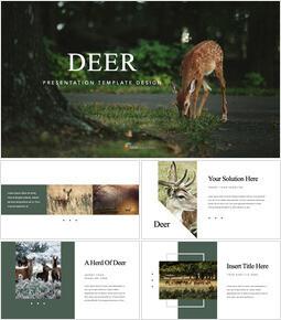 Deer Product Deck_40 slides