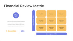 Financial Review Matrix and Profit & Loss Deck Layout_2 slides