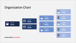 Human infographic Organization Chart Slide Layout_00