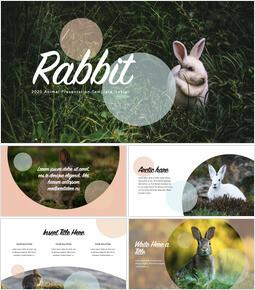 Rabbit PowerPoint to Keynote_40 slides