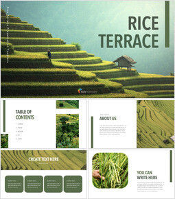 Rice Terrace Simple Keynote Template_40 slides