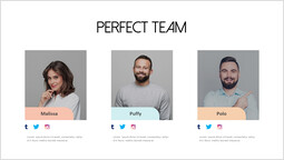 Sns With Perfect team Template_1 slides