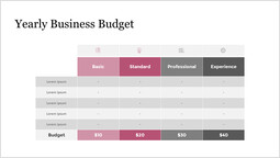 Yearly Business Budget Slide Deck_5 slides