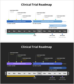 Clinical Trial Roadmap_2 slides