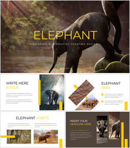 Elefante slideshare PPT_40 slides