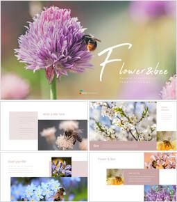 Flower & Bee company profile template design_35 slides