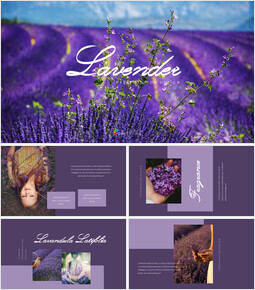 Lavender Presentation PowerPoint Templates Design_34 slides