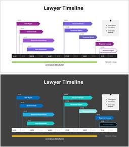 Lawyer Timeline_2 slides