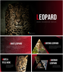 Leopard Business Presentations_35 slides