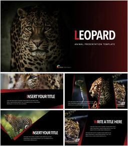 Leopard PPTX to Keynote_35 slides