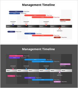 Management Timeline_2 slides