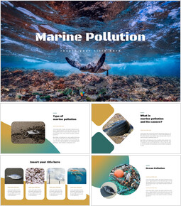 Marine Pollution Simple Slides Design_35 slides