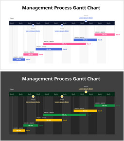 Project Outline Gantt Chart_2 slides