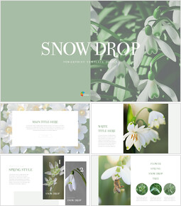 Snow Drop Theme Templates_00