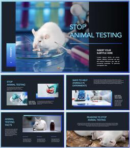 Stop Animal Testing Multipurpose Presentation Keynote Template_40 slides