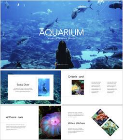 Acquario PowerPoint per Mac_35 slides