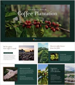コーヒー農園 プレゼンテーションのスライドppt_35 slides