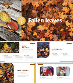 fallen leaves Keynote Examples_35 slides