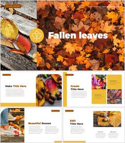 떨어진 나뭇잎 파워포인트 템플릿 멀티디자인_35 slides