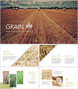 Grain Apple Keynote for Windows_35 slides