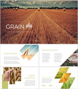 곡물 프로페셔녈한 PPT_35 slides